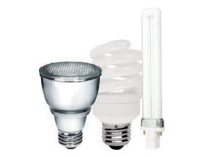 Compact Fluorescents Light Bulbs